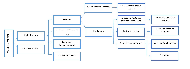 Estructura Organizativa de APROCAE